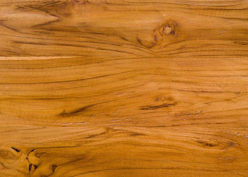 Obrenovitch mickaël nature about wood